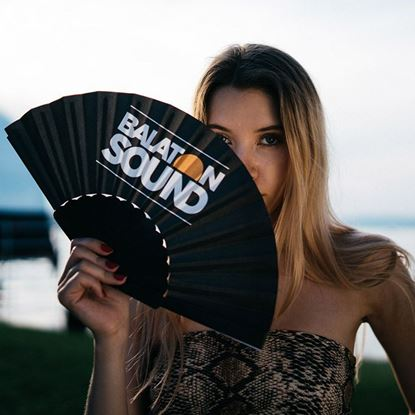 Picture of BALATON SOUND // Fan