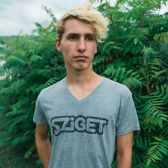 Picture of SZIGET // Meg Outline T-shirt